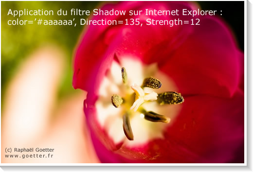 filtre Shadow sur IE