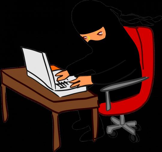 typing ninja